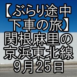 【ぶらり途中下車の旅】関根麻里の京浜東北線ぶらり旅おすすめスポットはどこ?9月25日