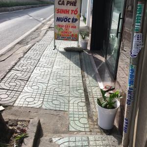 ベトナム!オヤジ散歩で阪神タイガースに遭遇!
