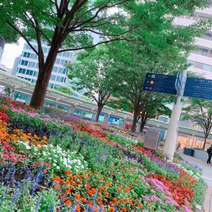 #六本木ヒルズ #六本木 #今日の写真 #roppongi #風景写真 #渋谷 #渋谷駅