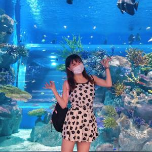 #DMMかりゆし水族館 #イーアス豊崎 #沖縄 に新名所オープン! #沖縄観光 #旅行記