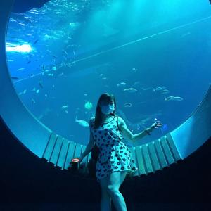 #沖縄 新しい #水族館 #DMMかりゆし水族館 #イーアス豊崎 #ナマケモノ 可愛かった