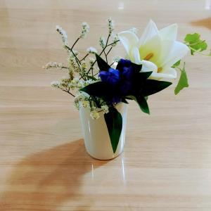 お花の定期便を試してみた