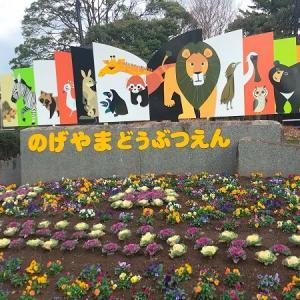 野毛山動物園のおすすめスポット紹介します!