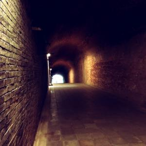 迷宮ダンジョンで危機一髪 | It was critical moment in the labyrinth dungeon.