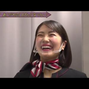 乃木坂46 清宮レイ&山崎怜奈「憧れのCAさんになりたい!」