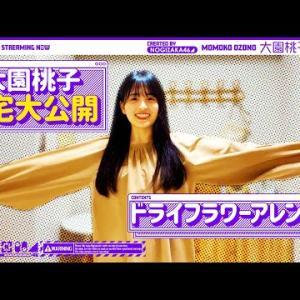 【自宅公開】大園桃子のルームツアー&ドライフラワーでかわいく装飾!