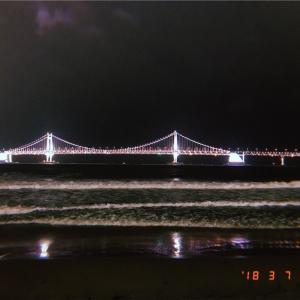 【釜山・広安里】夜景と海が見えるチキン屋【동래통닭】