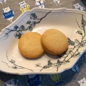 御茶ノ水ワテラスマルシェでOrganic Natural Sweets Nico