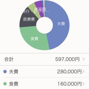 【年間支出集計】2020年の現金支出を集計
