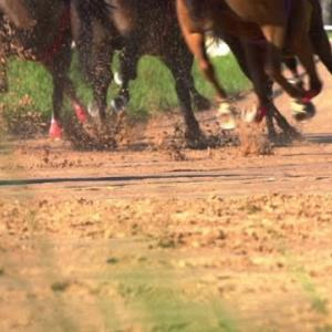 大井競馬第10レース予想5人気の馬13番的中🎯🎯🎯