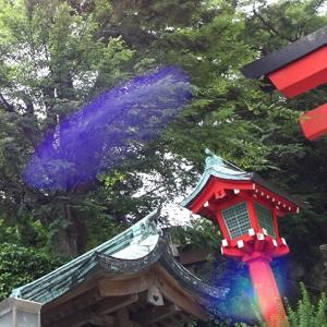 【まとめ】姫榊の江島神社参拝ツアー報告①〜⑤