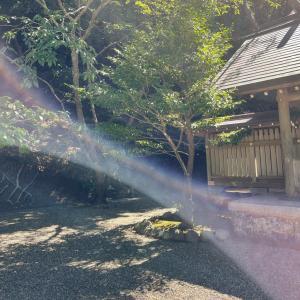 金運倍増のシナジーを生む 姫榊の安房神社ツアーその③(最終回)