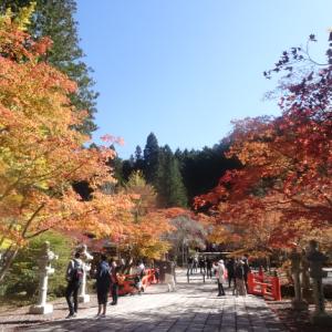 旅行:西日本周遊(2019年11月)