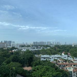 シンガポール ホテル隔離生活(SHN)⑨ SHN7日目 ありがたい差し入れ④