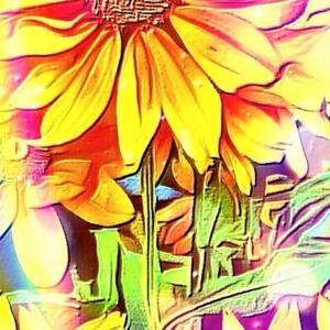 作品: ノスタルジック サマー Nostalgic summer : 戒's gallery