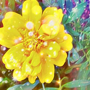 作品: 花 迸る光 Flowering light : 戒's gallery