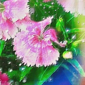 作品: 思い出のピンクの花 Memories of pink flowers : 戒's gallery