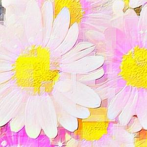 作品: 花 夏の日の想い出 Flowers  Summer memories : 戒's gallery