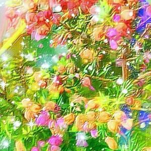 作品: 花 秋色花壇 Flowers Rainbow Autumn flowerbed : 戒's gallery