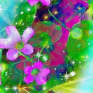 作品: 花達 夢ノート Flowers Dream note : 戒's gallery