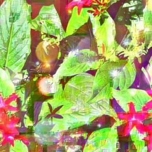 作品: 華 虹の降り立つ花壇 Glossy.  Flowerbed with a rainbow : 戒's gallery
