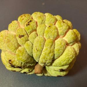 【中国】台湾産の果物2種類を輸入停止 パイナップルに続き政治圧力か