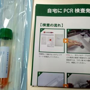 PCR検査の結果は・・・陰性でした。