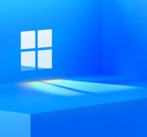 【次世代OS】6月24日にMicrosoftがWindows11が発表される予定【迷惑な話】