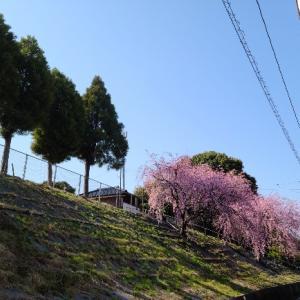 福山という街について