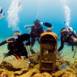 沖縄の別スポットでダイビング!