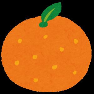 オレンジ村に行きたい!南房総市野宮農園