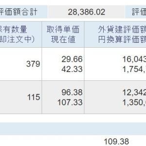 海外資産(2021.6) 2週目
