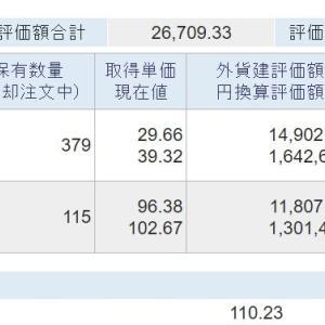 海外資産(2021.6) 3週目
