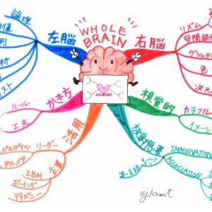 はじめてのマインドマップ🔰【第1回 】全脳思考とマインドマップ