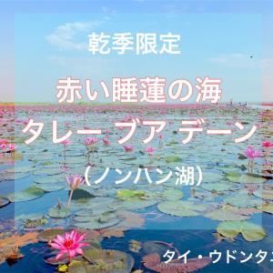 【絶景】北の町の「赤い蓮の海」はやっぱり良かった(ウドンタニー県)