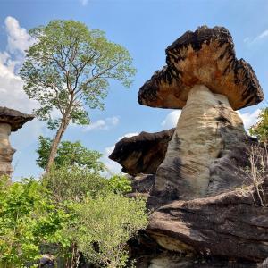 断崖の絶景と先史時代の壁画!?「パーテム国立公園」(ウボンラーチャターニー)