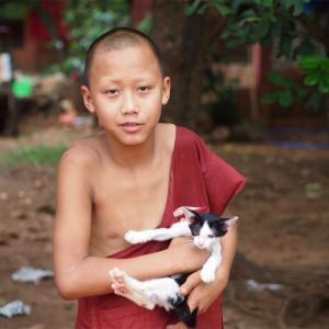 タイのお坊さんはなぜ眉毛も剃るのか?