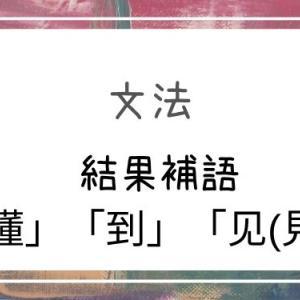 【中国語】結果補語2:「懂」「到」「见(見)」
