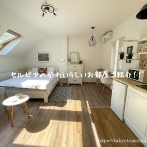 セルビアで借りたお部屋が可愛すぎる!!Airbnb物件ご紹介!!