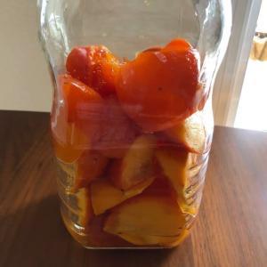 柿酢の仕込み
