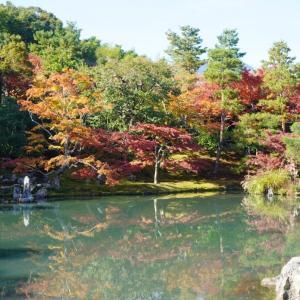 【旅行】年末に京都へ行ってきました♡ & 楽しかった居酒屋。