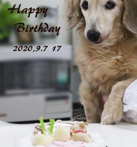 ★Happy Birthday!!★