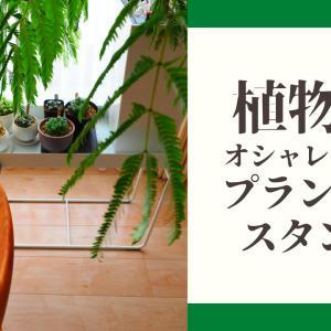 【植物をおしゃれに飾る】プランタースタンド【燕三条/SB-1300】