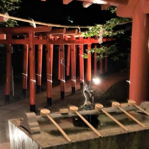 来宮神社【熱海】のライトアップ