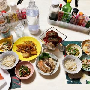 ハンバーグ、鶏胸肉ポン酢で晩酌、後から頂き物餃子を追加