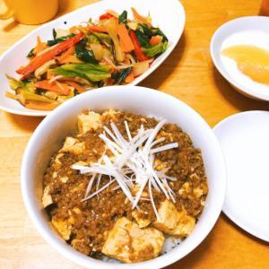 麻婆豆腐丼献立、彩り野菜ときのこのオイスター炒めで栄養チャージ。