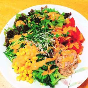 ヒンヤリさっぱりハマル味!冷凍うどんをレンジで簡単「サラダうどん」の作り方。
