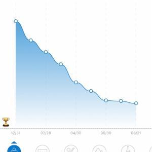 Day302:ダイエット10ヶ月経過まとめ