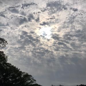 今日の空と…