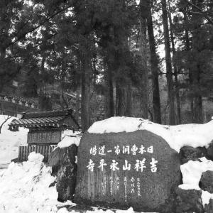 巨大かえるが永平寺に出現! 福井カエルスポット